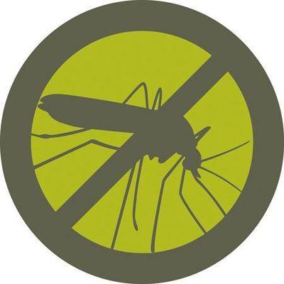 Avatar for Mosquito Squad