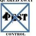Avatar for Squared Away Pest Control, Inc