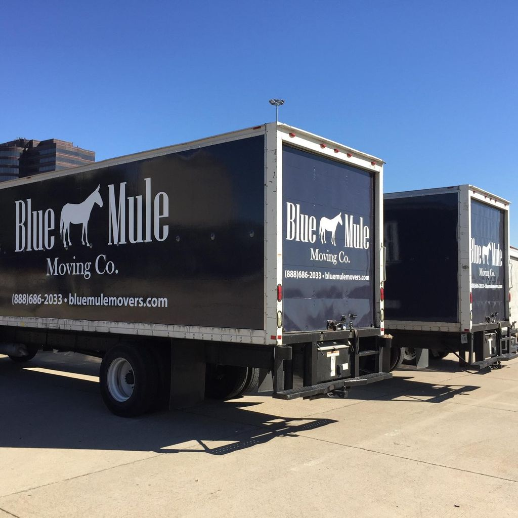 Blue Mule Movers