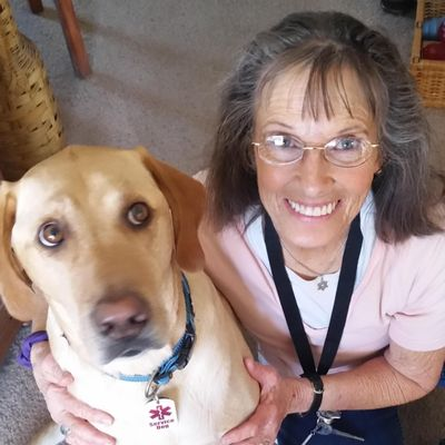 Avatar for Best Friends Dog Training, Behavior & Evaluations Colorado Springs, CO Thumbtack
