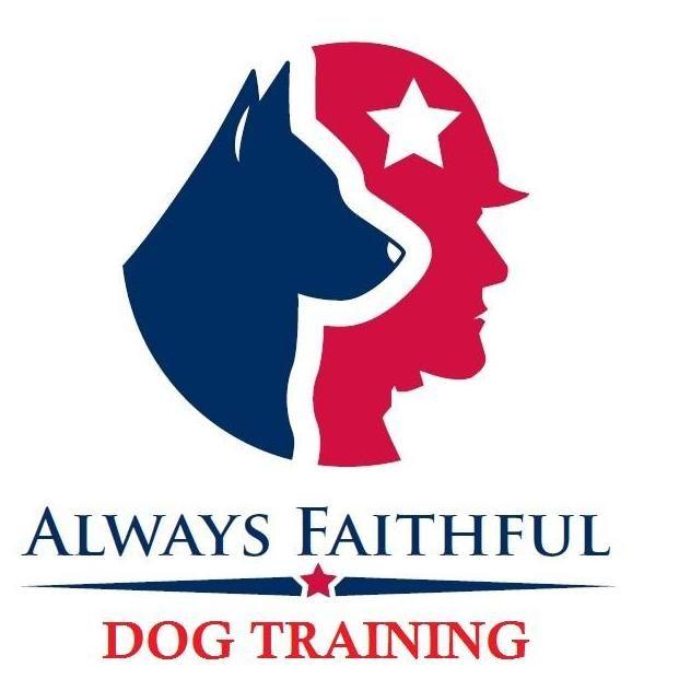 Always Faithful Dog Training Tampa Bay LLC