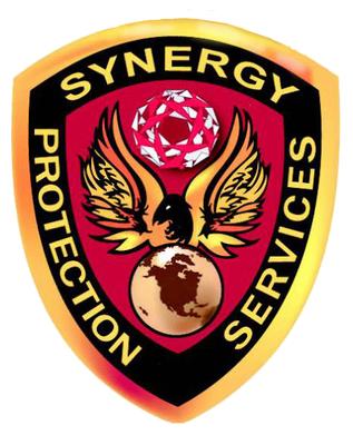 Avatar for Synergy Protective Services, Inc.