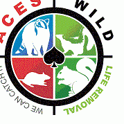 Avatar for Ace's Wildlife Removal Imperial, MO Thumbtack