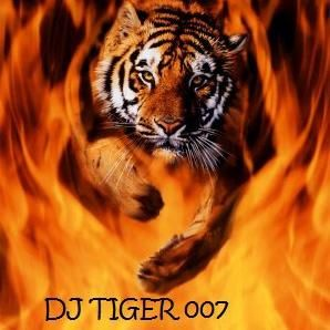 Avatar for Tiger Tunes DJ Dragonfly Photography