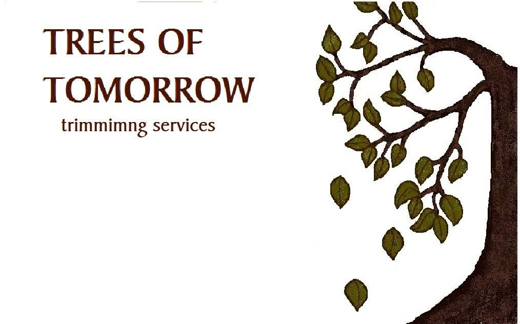 Trees of Tomorrow trimming services
