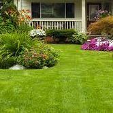 R&E Lawn Service