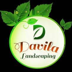 Davila Landscaping Inc.