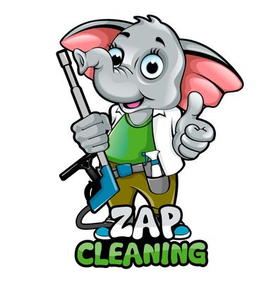 Avatar for ZAP Cleaning™