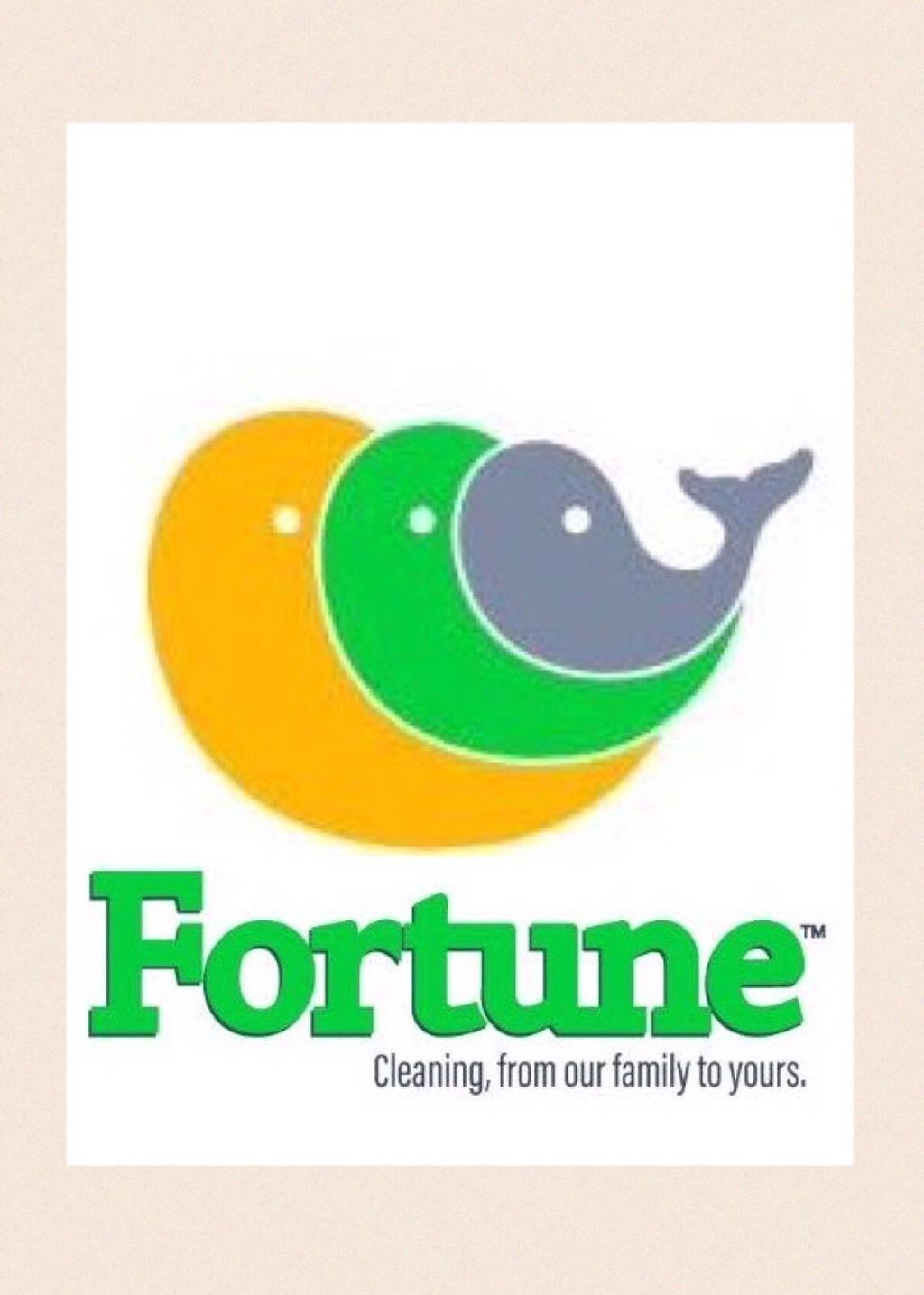 Fortune Cleaning