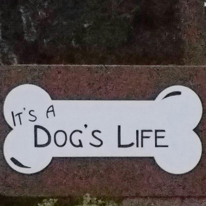 It's A Dog's Life Pet Daycare, Resort & Spa, LLC