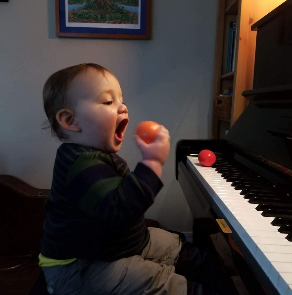 David's Piano School