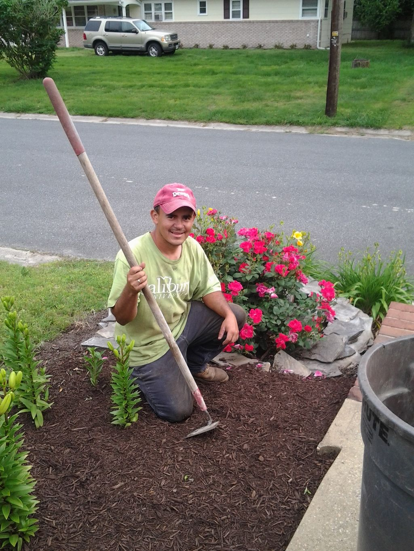 castellanos yard Services & painting LLC