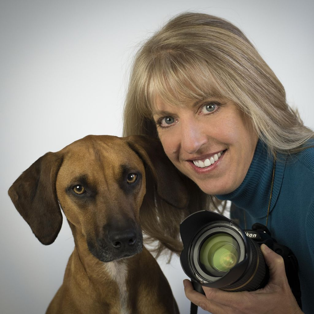 Annie Ballantine - Artful Paws Photography