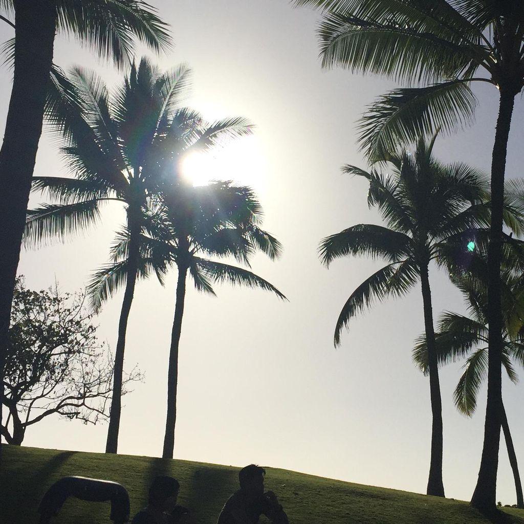 Hawaiian Spirit Weddings, One Spirit Center for...
