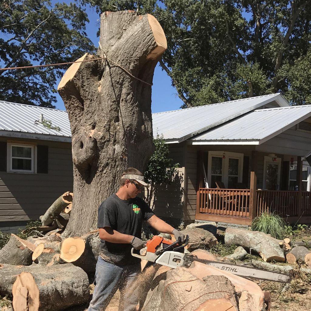 Harpers Tree Service