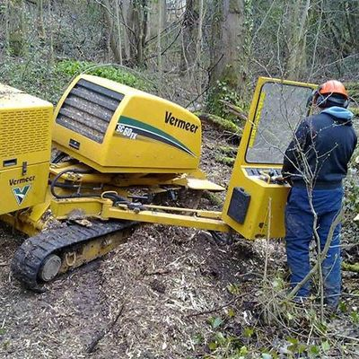 Avatar for Stump Grinding &Tree Services Lincolnton, NC Thumbtack