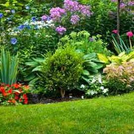 AFA Lawn Care