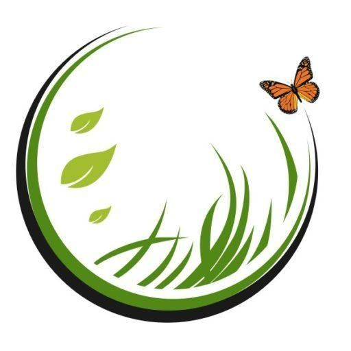 Monarch Tree and Landscaping Service