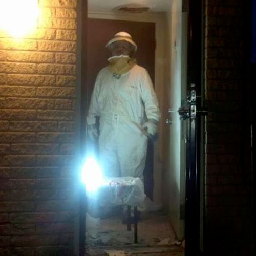 Lead Technician Robert Irvin in his bee suit removing a bee hive from the inside wall of a house.