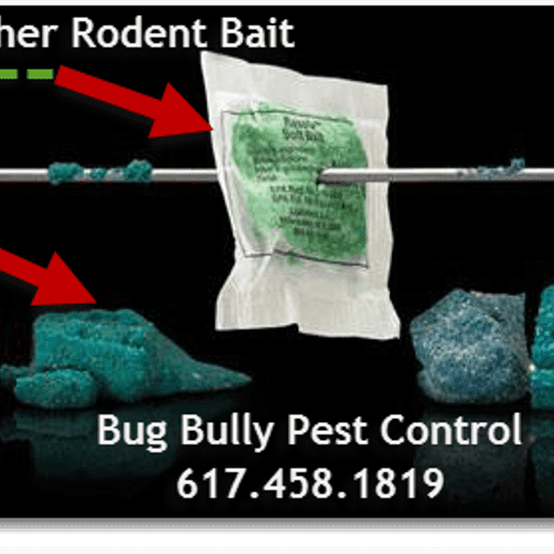 We use all weather rodent bait which allows for elimination all year round. There is also no chance of secondary poisoning to pets.