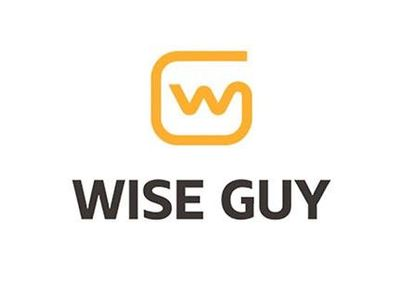 Avatar for Wise Guy Computer & iPhone Repair