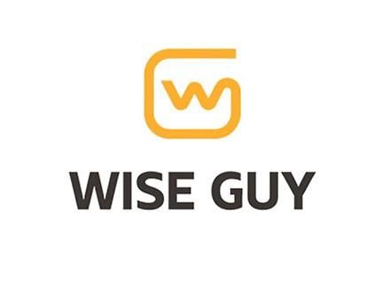 Wise Guy Computer & iPhone Repair