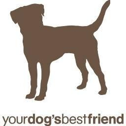 Avatar for Your Dog's Best Friend New York, NY Thumbtack