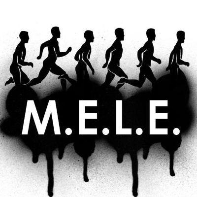 Avatar for MELE Fitness Solutions, LLC