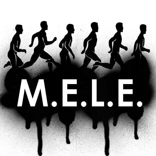MELE Fitness Solutions, LLC