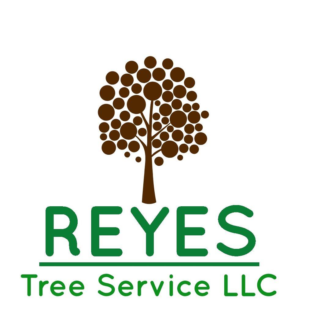 Reyes Tree Service LLC