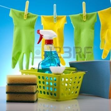 marvelous maid service