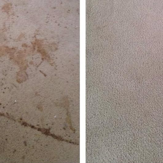 Eatmon's Carpet Cleaning and Restoration
