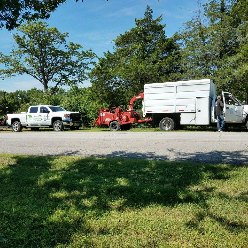 Canary Tree Service ,Inc