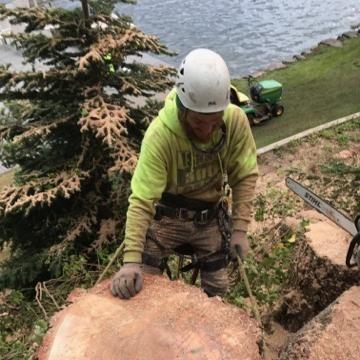 Isaac and Pals Tree Service, LLC