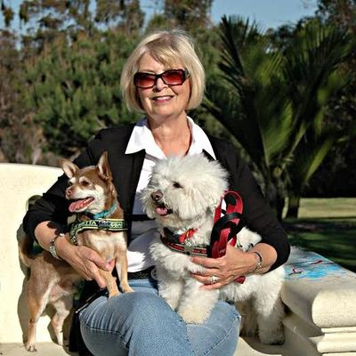 Avatar for Happy Paws Dog Walking and Pet Sitting of San Diego San Diego, CA Thumbtack