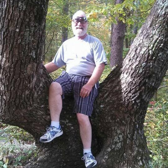 Quad C Tree Service
