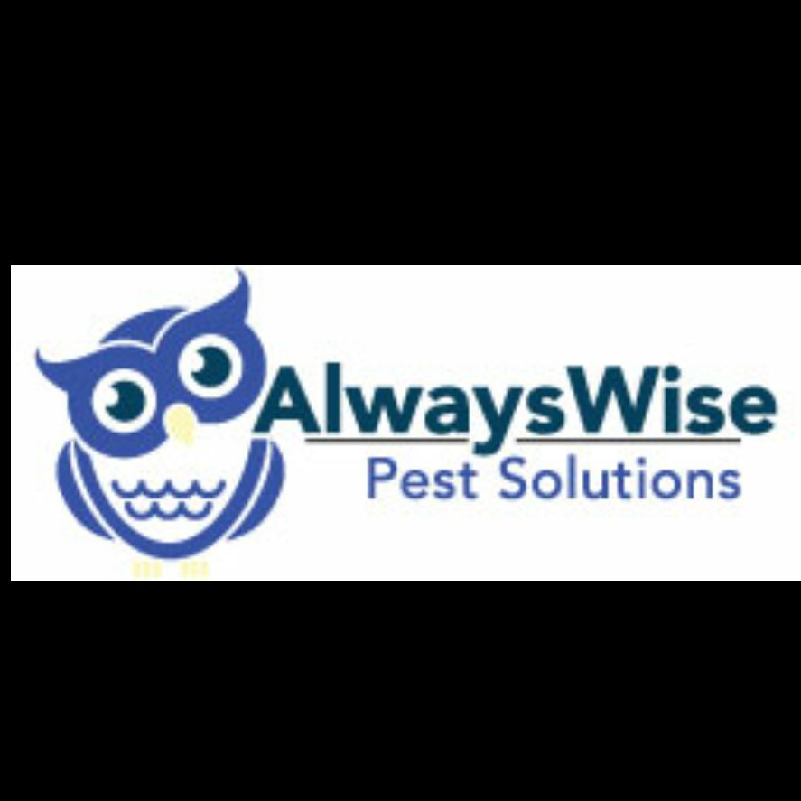 Always Wise Pest Solutions