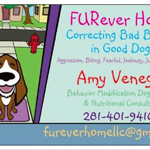 FURever Home Behavior Modification Dog Training Business Card.