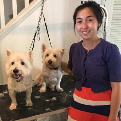 Avatar for Dog groomer Ewa Beach, HI Thumbtack