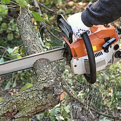 Peraza´s  tree service