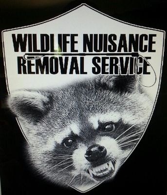 Avatar for WILDLIFE NUISANCE REMOVAL SERVICE