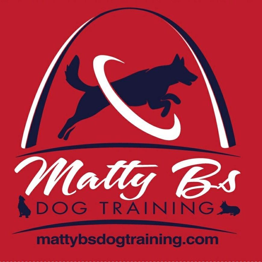 Matty B's Dog Training