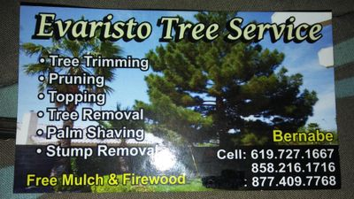 Avatar for Evaristo tree service