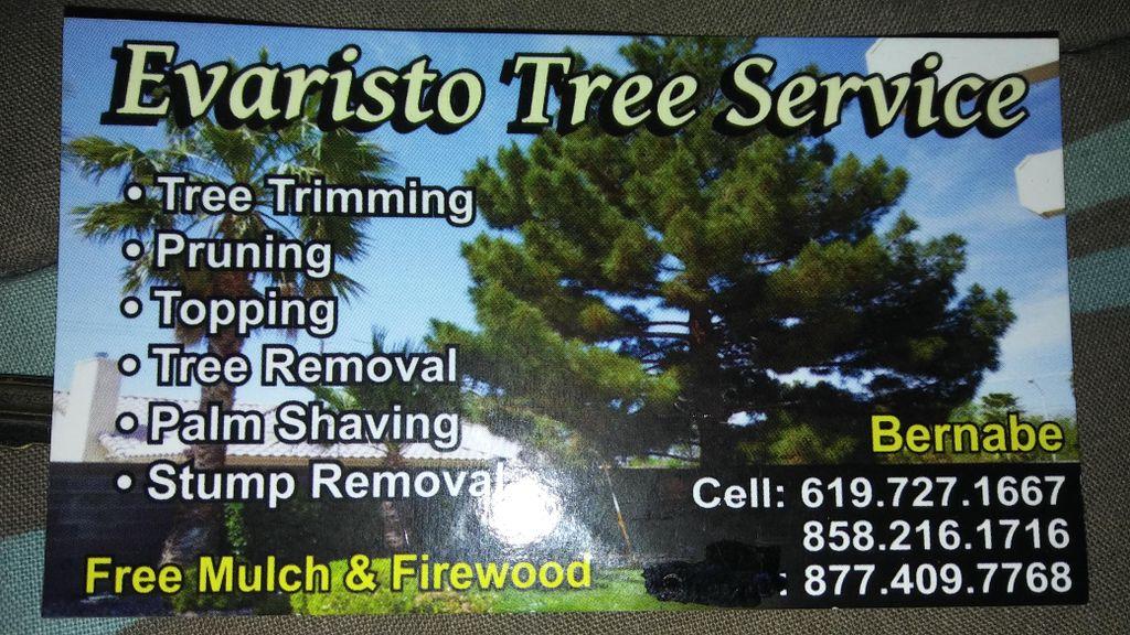 Evaristo tree service