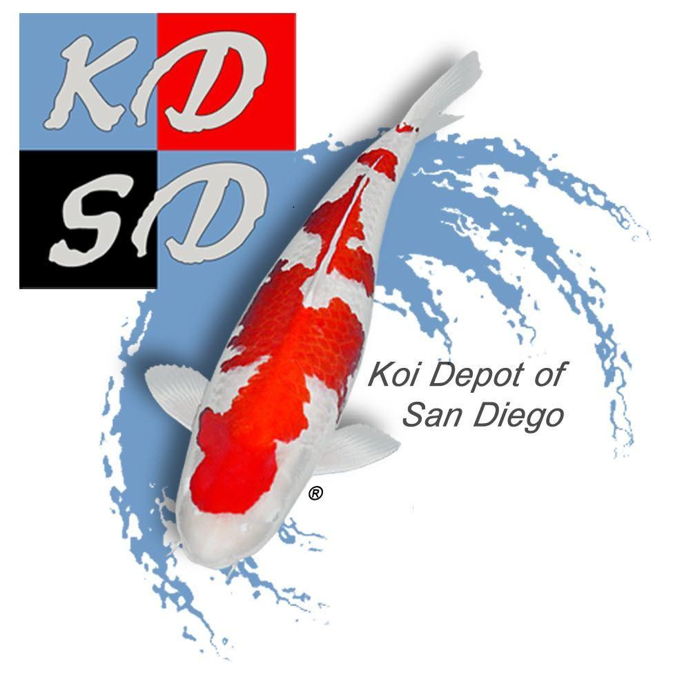 Koi Depot of San Diego/Inland Empire