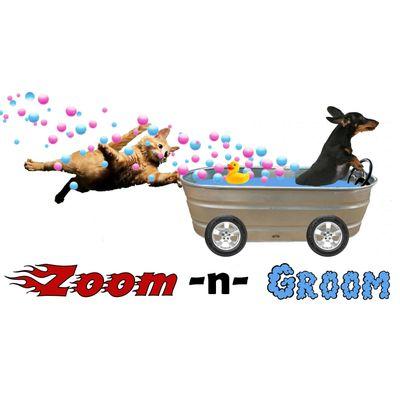 Avatar for Zoom -n- Groom Cedar Park, TX Thumbtack