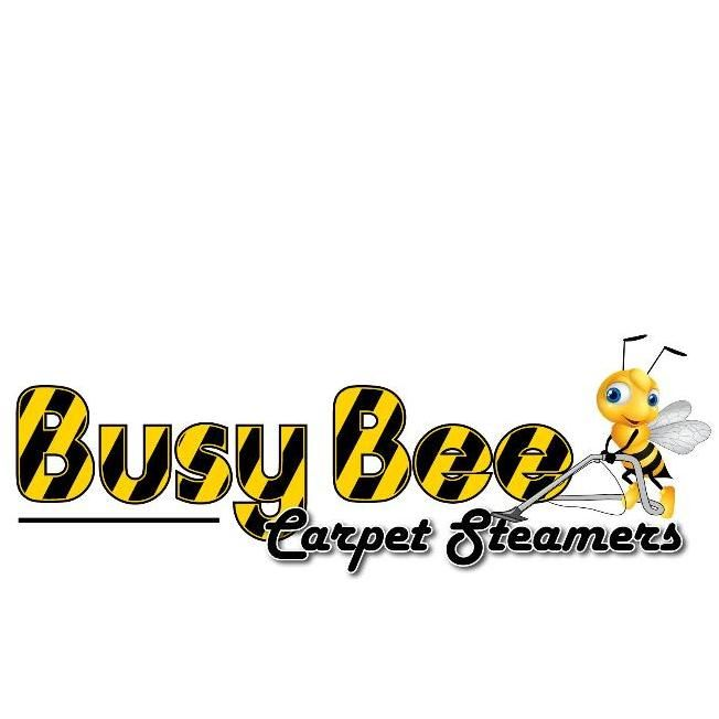 Busy Bee Carpet Steamers