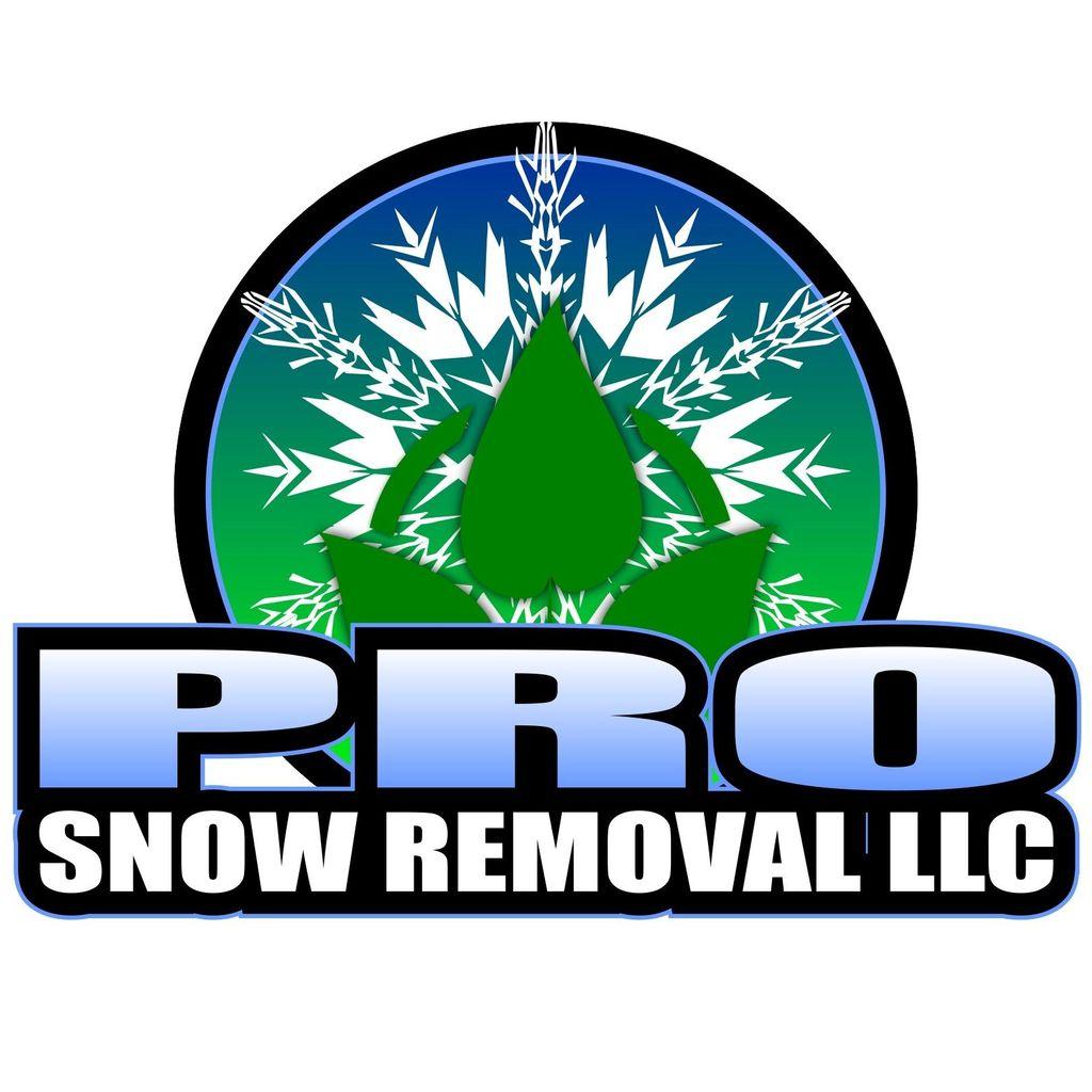 Pro Snow Removal