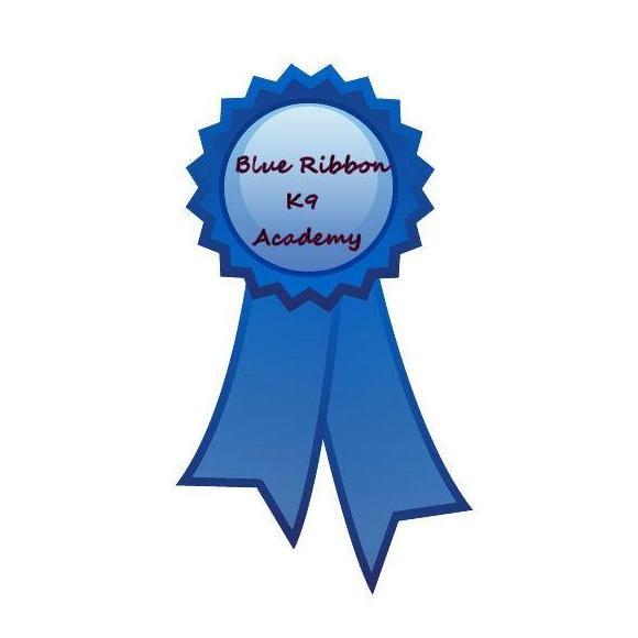Blue Ribbon K9 Academy