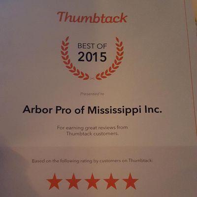 Avatar for Arbor Pro of Mississippi Inc. Pascagoula, MS Thumbtack